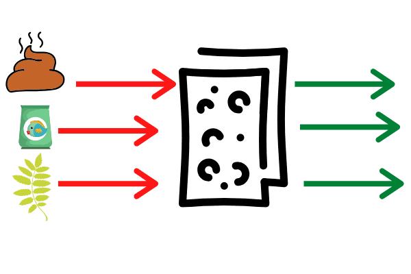 mechanical filtration