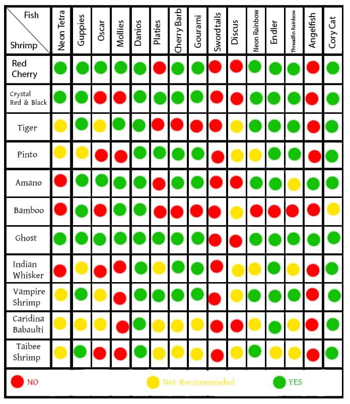 Freshwater Shrimp & Fish Compatibility Chart
