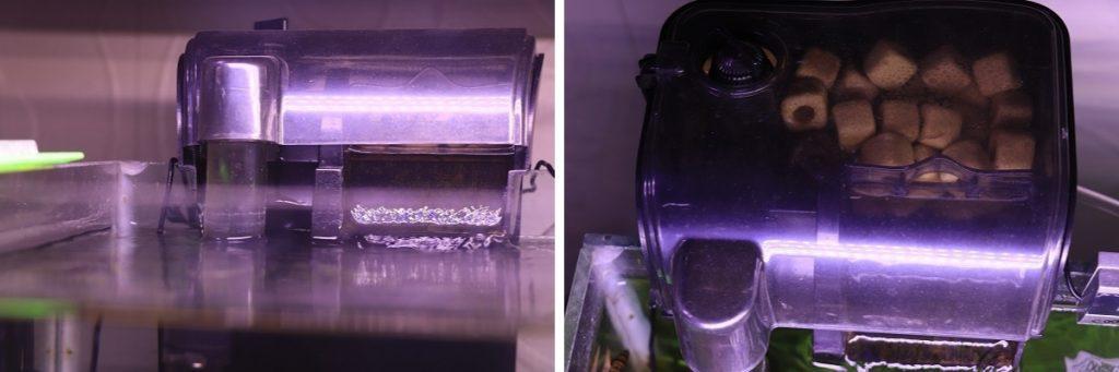 shrimp tank filter