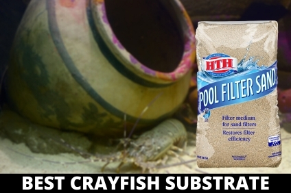 BEST CRAYFISH SUBSTRATE