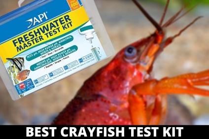 BEST CRAYFISH WATER TEST KIT
