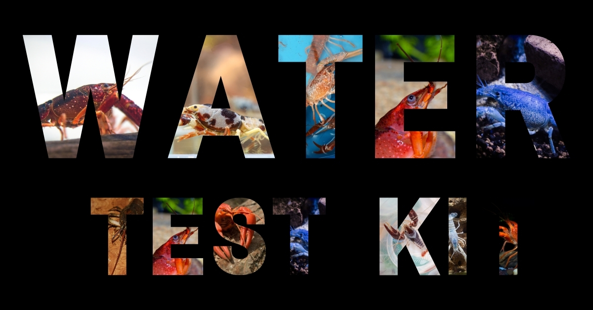 Best Water Test Kit For Crayfish Tank