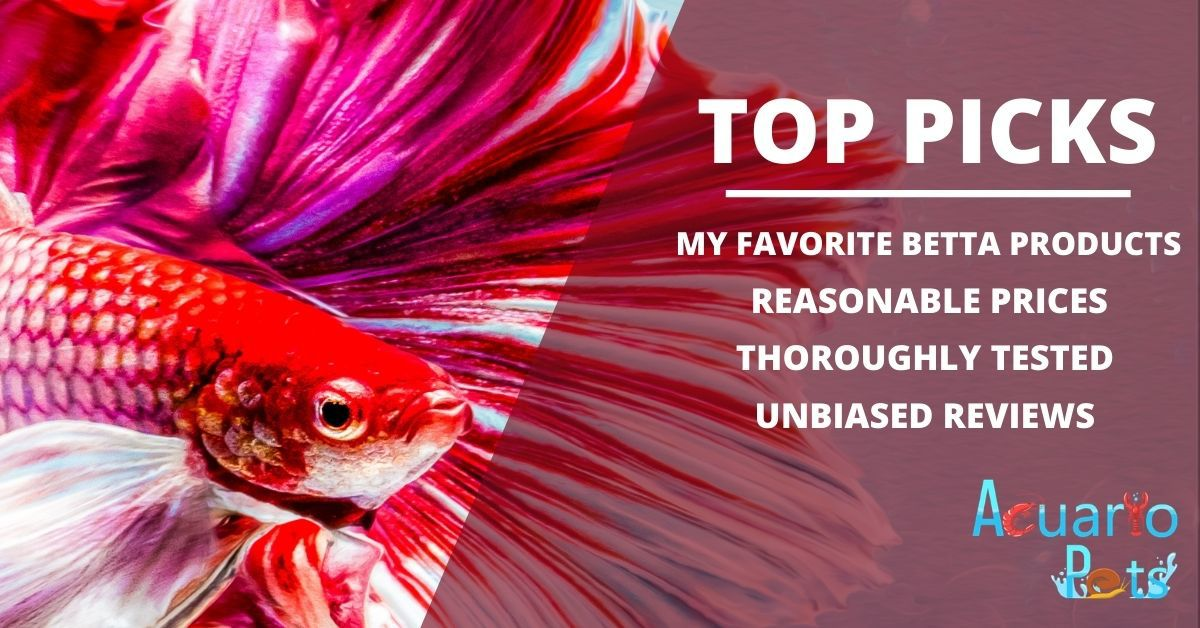 top betta products